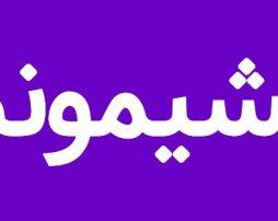 اعلام پشیمانی بازیگران ازانتخاب رئیس جمهورایران